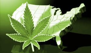 legalization-go-feds-09-01 (1)